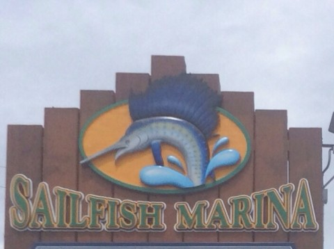 florida fishing charters sailfish marina